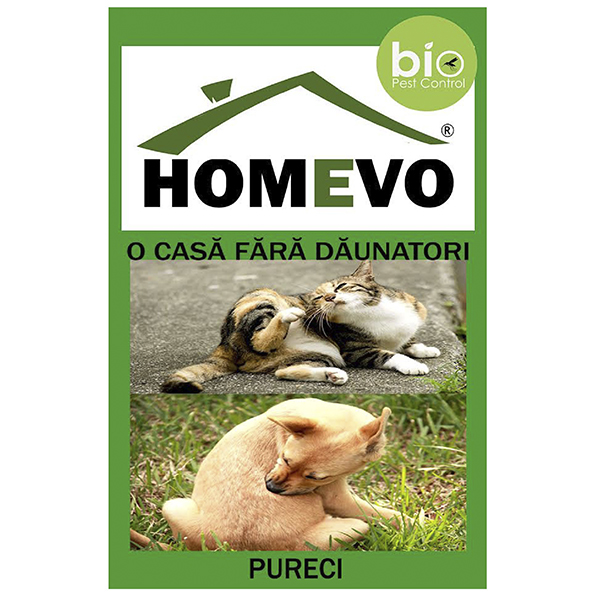 Homevo-Purici